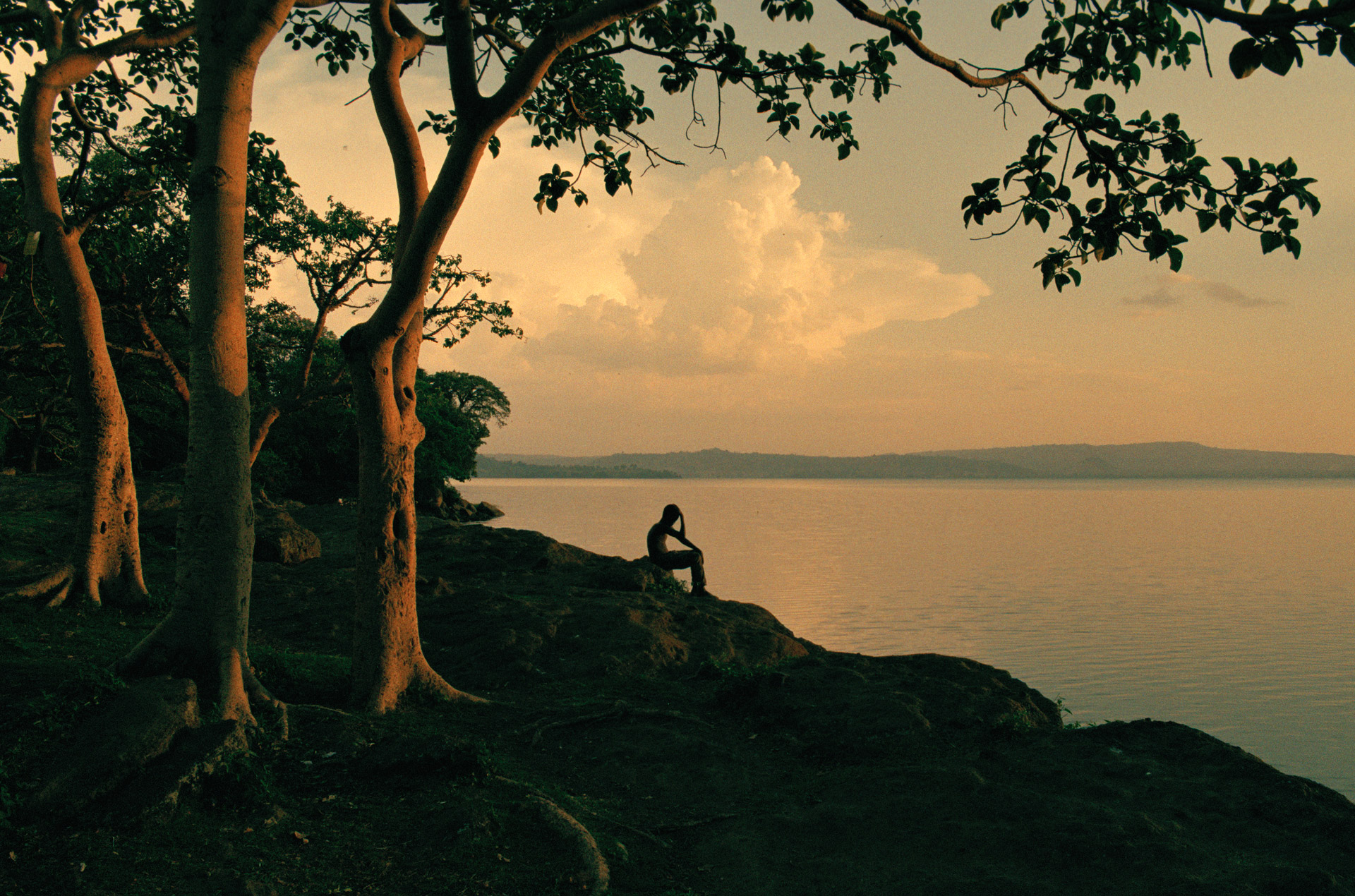 Man sitting by the lake in Amora Gedel Park in Hawassa