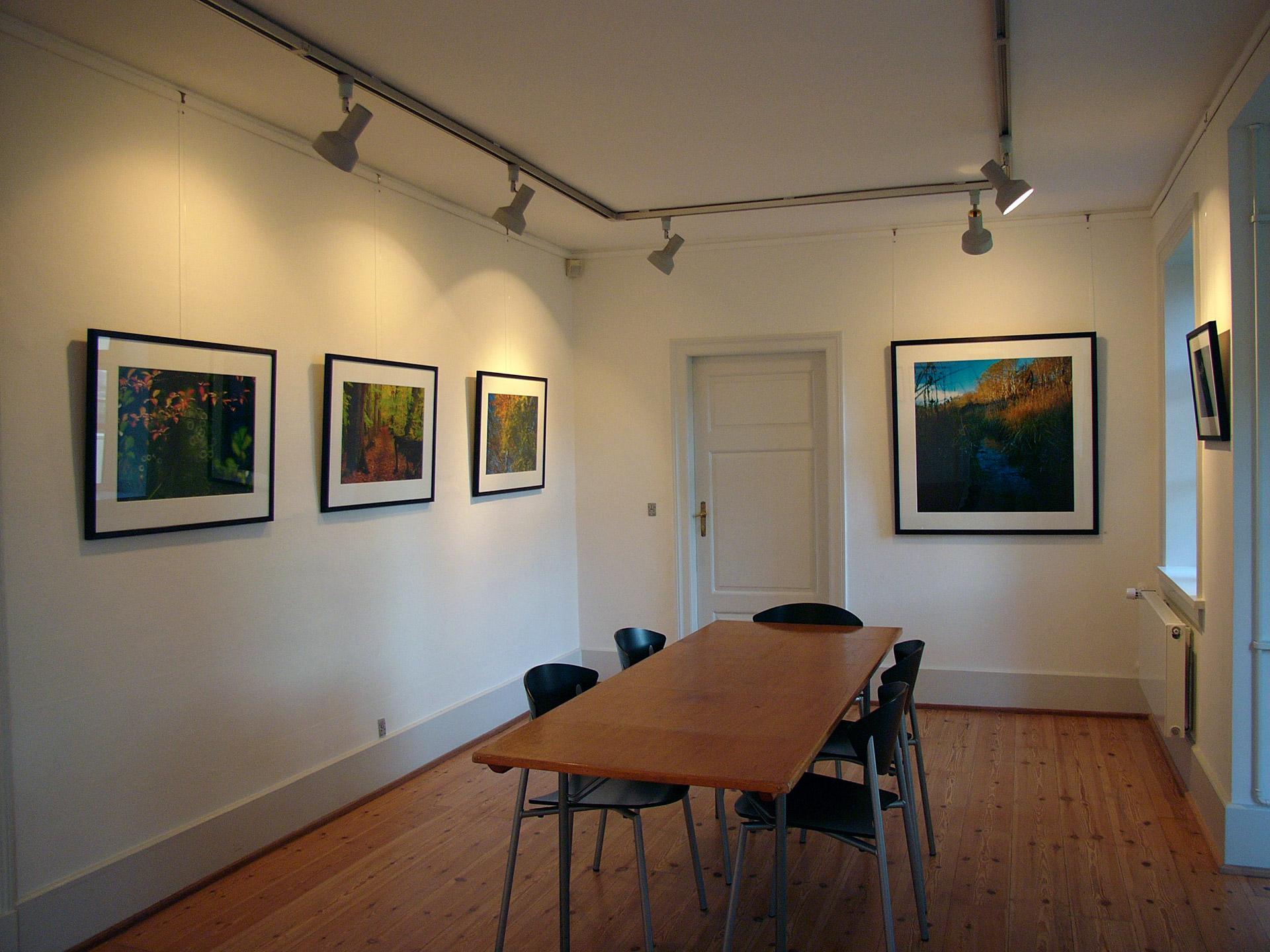 Mikkel Alexander Grabowski's exhibition about Mølleåen in Thorasminde in Bagsværd
