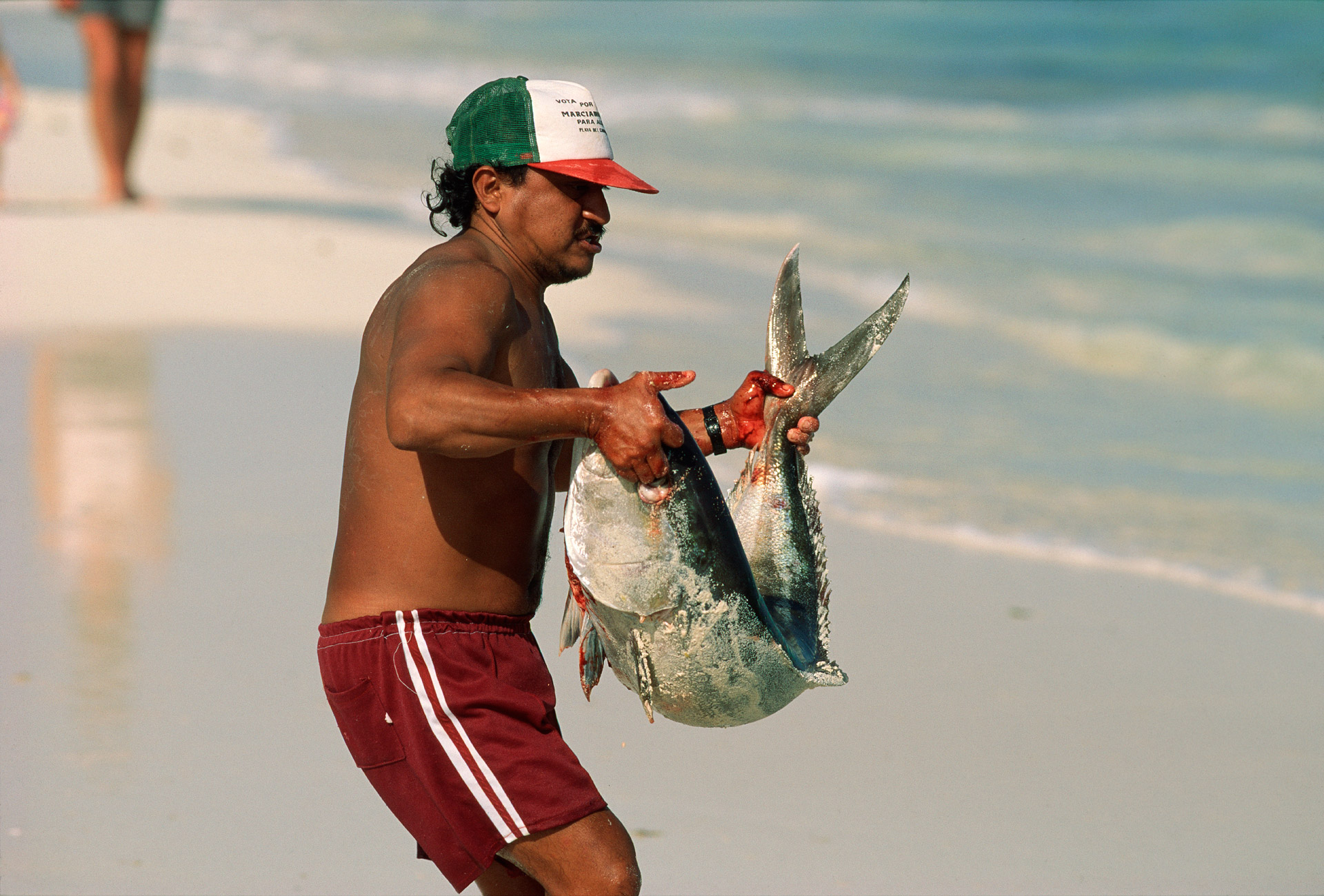 Fisherman with a big fish on the beach in Playa del Carmen in Mexico