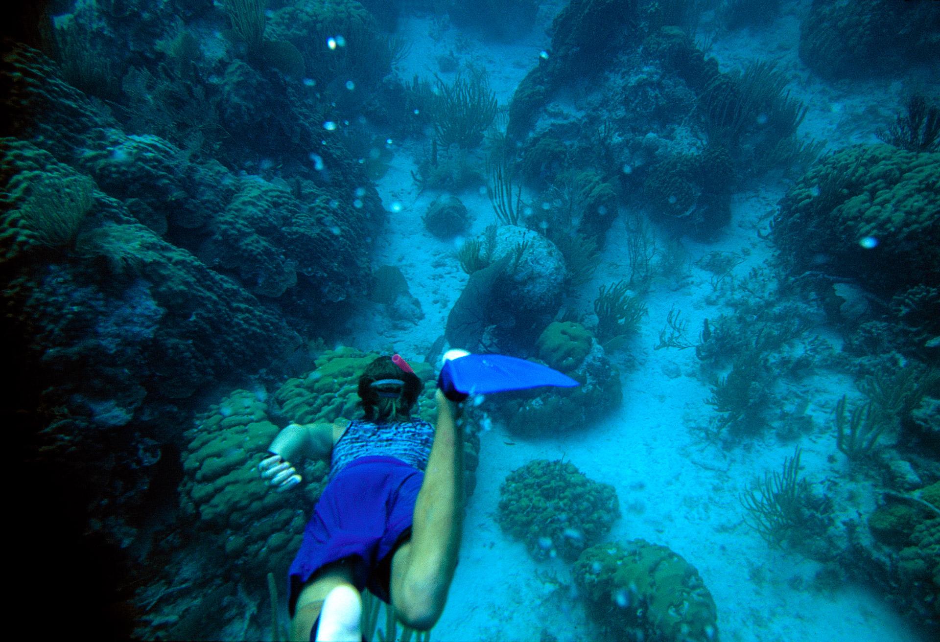 Man snorkeling off Cay Caulker in Belize