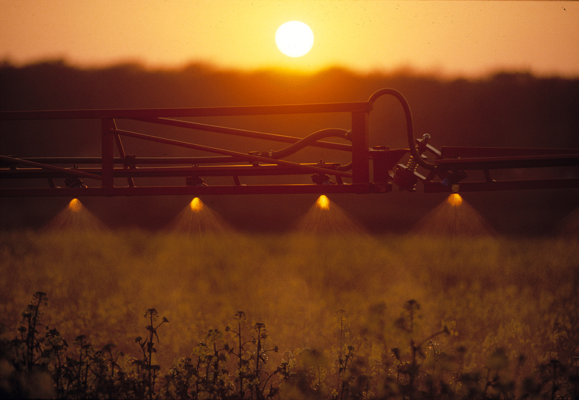 Pesticides are being sprinkled on a field. Hardi International