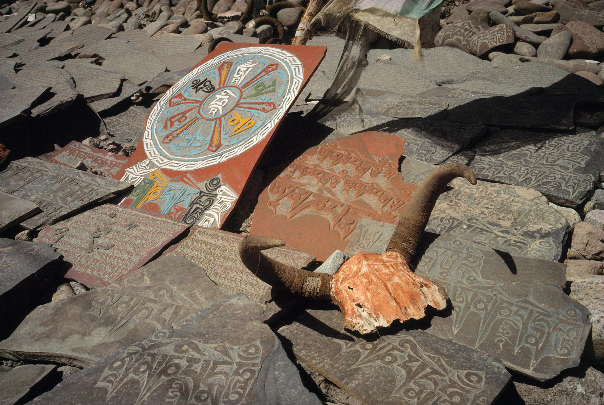 Mani stones and a skull from a goat is a religious manifestation in Ladakh in India